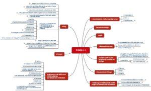 Bild zeigt Mindmap mit der Kapitelstruktur IEC 60601-1-2