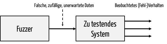 Fuzz-Testing von Systemen mit zufälligen Daten