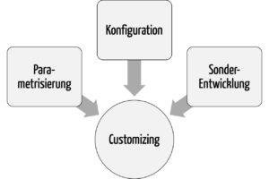 Das Customizing umfasst die Parametrisierung, die Konfiguration und die Erweiterung durch Spezialentwicklungen. (zum Vergrößern klicken)