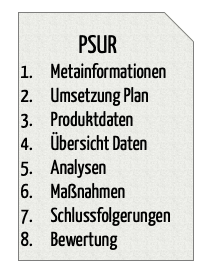Periodic Safety Update Report (PSUR, Sicherheitsbericht): Struktur